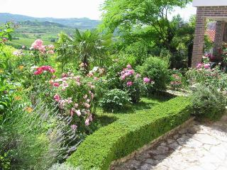 Comfortable apartment, garden, Motovun