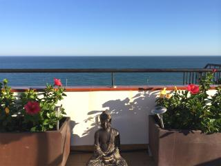 Planted flowers on terrace with sunshine all day and a great sea view!