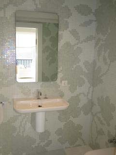 Guest Shower Room with Bisazza mosaic tiling which is used in all Bathrooms.