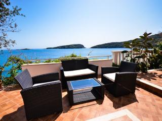Beach villa near Dubrovnik with private  beach, Molunat
