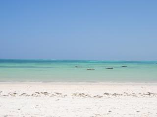 Zanzibar ideal Villa on the beach, Kitesurf spot., Kiwengwa