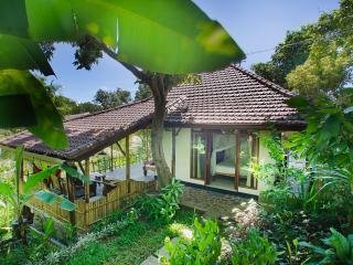 Indo Rumah Zengarden, Rumah Cantic, Dencarik