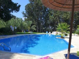 Paradise Gardens IV, Paphos