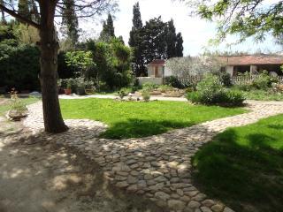 Cigales et Grillons, Narbonne