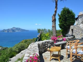 Panoramic villa facing Capri - V723, Sorrento