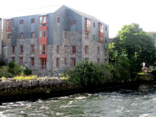 The Erin Suite - Granary Suites, Galway