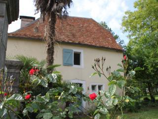 maison  de 1825 avec piscine au coeur du béarn, Navarrenx