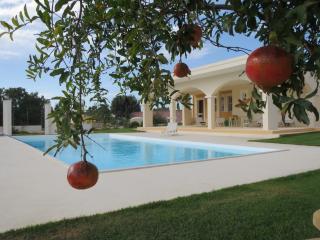 Villa Bulcrini