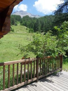 vue de la terrasse en été