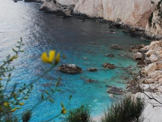 Paxos beauty