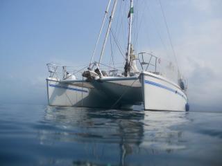Catamaran Cush