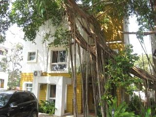 Luxury Villa for short/long term rent in Anjuna - one of the happening parts of