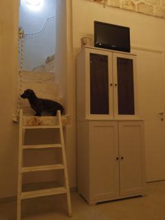 Living. Il bassotto Golia, il padrone di casa, sulla scala verso la terrazza