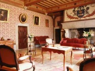 Exclusive rental castel in the south of France