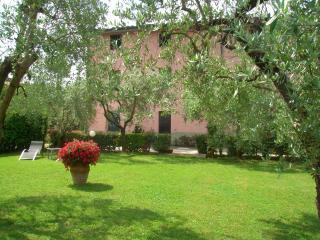 Casa degli Olivi, Lucca