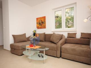Living room area with pull out sofa and arm chair