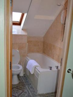 The bathroom, with full-size bath and electric shower over
