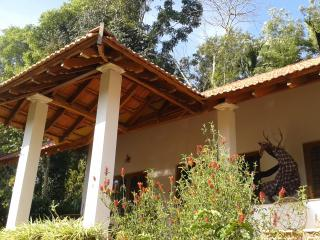 The Misty Guest House in Coorg