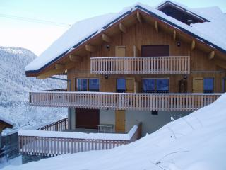 Apartment close to lifts, Vaujany