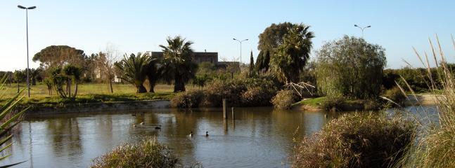 estanque privado