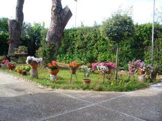 i due pini, Ladispoli