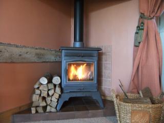 Log woodburner