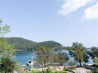 Lovely room with sea view-1, Mljet Island