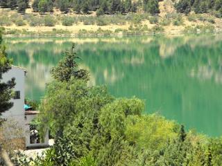 Green lake in the morning