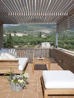 Outside lounge area - view of the olive grove.