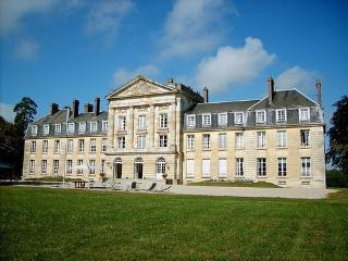 Luxury Country Chateau in France - Chateau Magnifique, Courtomer