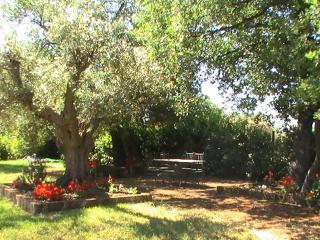 La Villa degli Etruschi, Cerveteri