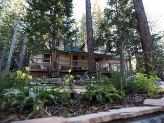 Recently Renovated 3BR Forest Chalet in South Lake Tahoe - 10 Minutes to Heavenly & Sierra- W/Hot Tub!