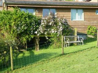Hursey Gate Stables, 2 bedroom rustic converted stables overlooking paddock