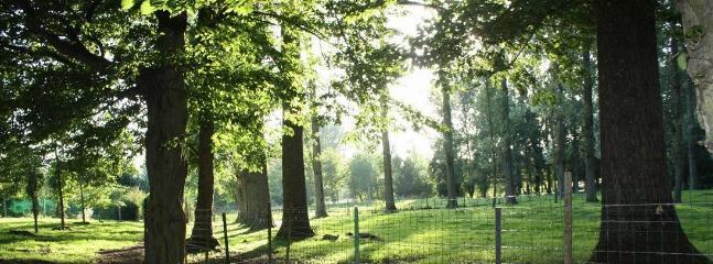 En plein coeur du village historique de Rivière