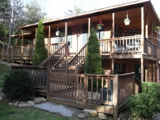 Smoky Mountains Foothills Retreat- 'A Pet Friendly Place'