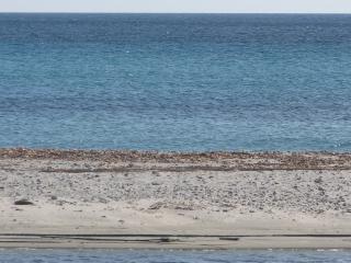Case vacanze Luciana, Torpe
