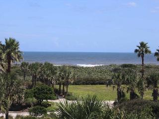 South of Charleston style in Cinnamon Beach !   Private Pool!  Ocean Views!