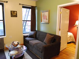 Urban and vibrant 2 bedroom apartment in Midtown West