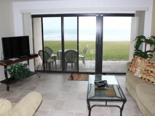 Direct Ocean Front - Amazing Ocean Views-1st Floor, New Smyrna Beach