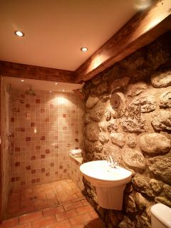 Downstairs bathroom is a wet room with walk in shower and exposed granite walls