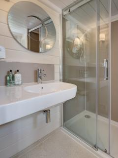Large walk-in shower with contemporary washbasin