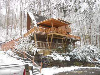 919 Great Priced Affordable Cozy Cabin Gatlinburg