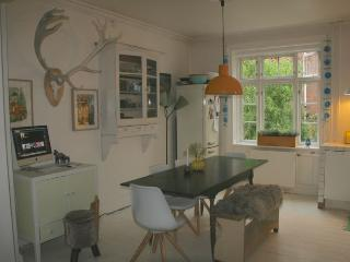 Very cozy Copenhagen apartment near Faelled park, Kopenhagen