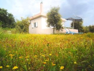 Low Rates - Privacy - 3 minutes from the beach!!!, Panormos