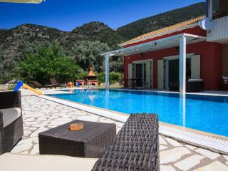 Private villa with spacious garden and swimming-pool -ideal for families!, Nidri