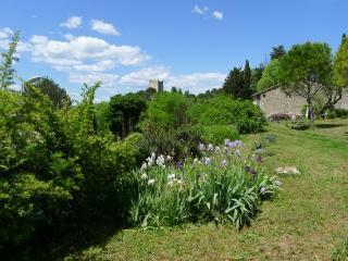 Mazet provencal, piscine, jardin, proche centre, Sommières