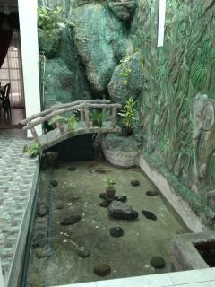Waterfall/ Fish Tank