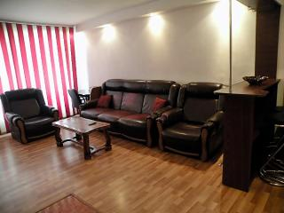 Calea Victoriei, downtown one bedroom apartment