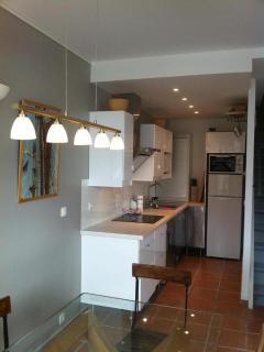 cuisine équipée frigo/congel, LV, fours MO+tradi, plaque, toaster, NESPRESSO, bouilloire, mixer ...