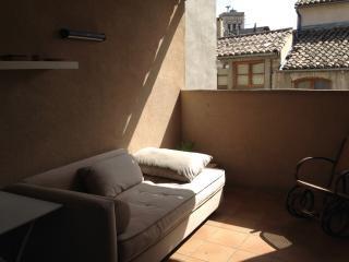 Duplex Terrasse centre historique de Nimes
